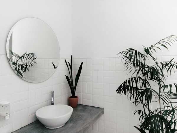 turning-your-bathroom-to-spa-by-adding-plants